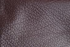 Free Brown Leather Stock Photography - 13673542
