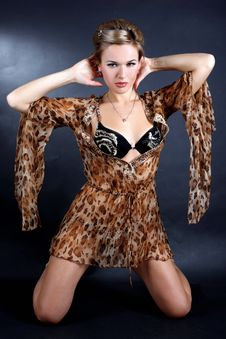 Free Woman In Dress With Leopard Style Stock Photography - 13674602