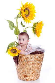 Free Baby Girl In Sunflowers Stock Photos - 13675893