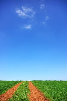 Free Road In Green Field. Royalty Free Stock Photos - 13676678