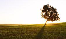 Free Rural Scene Stock Image - 13677161
