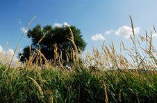 Free Landscapes Ukrainian Villages. Royalty Free Stock Photography - 13678917