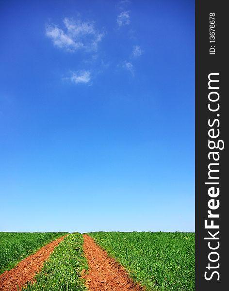 Road in green field.