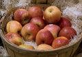 Free An Apple A Day Stock Photos - 13681203
