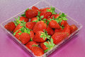 Free Strawberry Stock Photos - 13687333