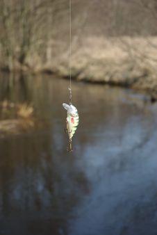 Little Wobbler For Fishing Royalty Free Stock Photo