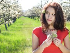 Free Girl In Spring Garden Royalty Free Stock Images - 13680479