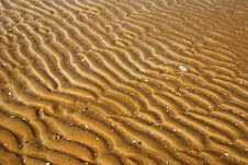 Free Waves On The Sand Stock Images - 13683284