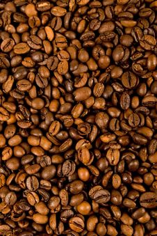Free Cofee Beans Stock Image - 13685941
