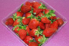 Free Strawberries Stock Photos - 13687233