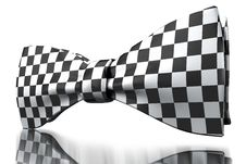 Free Checkered Bow-tie Stock Photography - 13688052