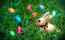 Free Chocolate Bunny And Eggs Stock Photography - 13688412