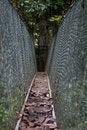 Free Canopy Walk Stock Image - 13698191
