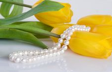 Free Tulips And Pearl Necklace Royalty Free Stock Photography - 13690037