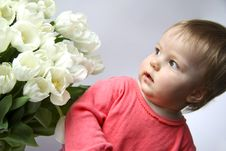 Free The Girl With Tulips Stock Photos - 13690193