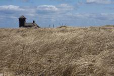 Free Wheat Field Landscape Stock Photo - 13690590