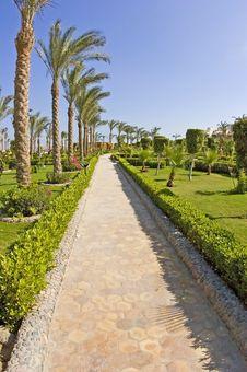Free Path Through A Tropical Garden Royalty Free Stock Photos - 13690848