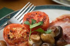 Free Grilled Tomatoes On A Plate Royalty Free Stock Photography - 13690867