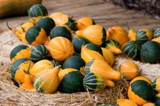 Free Pumpkins On The Straw Royalty Free Stock Photos - 13691138