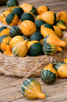 Free Pumpkins On The Straw Royalty Free Stock Images - 13691139