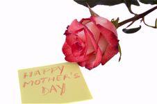 Free Happy Mam Royalty Free Stock Photos - 13691348