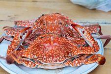 Free Crab Stock Image - 13692121