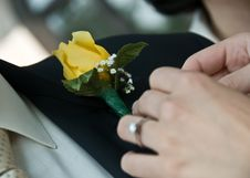 A Woman Pinning A Boutonniere Royalty Free Stock Photo