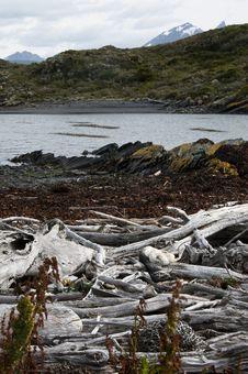 Free Tierra Del Fuego Stock Images - 13695704
