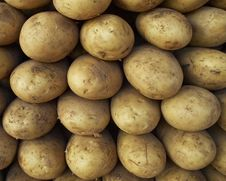 Free Earth Treasures, Raw Potatoes Stock Photos - 13696253