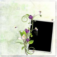 Free Green Spring Frame With Crocuses Royalty Free Stock Image - 13697056