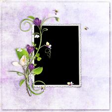 Free Violet Spring Frame With Crocuses Royalty Free Stock Photos - 13697068