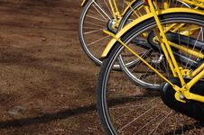 Bikes In Holland For Rent Royalty Free Stock Image