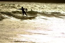 Free Women Surfing Stock Images - 13698634