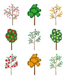 The Collection Of Trees Stock Photography
