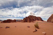 Free Wadi Rum Landscape (wide Angle) Royalty Free Stock Image - 13699446