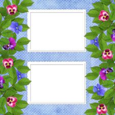 Free Card For The Holiday  With Flowers Royalty Free Stock Photo - 13699595