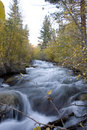 Free High Sierra Creek Stock Photo - 1379300
