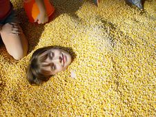 Free Kid In The Corn Royalty Free Stock Images - 1370829