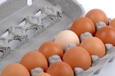 Free Eggs Stock Photo - 1371580
