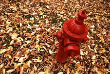 Free Fall Hydrant Stock Photo - 1371840