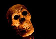 Free Spooky Skull Head Stock Photography - 1374812
