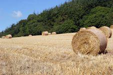 Free Devon Countryside Scene Royalty Free Stock Photo - 1378895