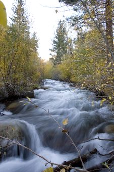 Free High Sierra Creek Stock Photo - 1379300