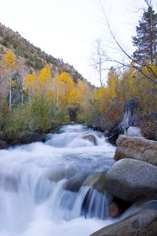 Free High Sierra Creek Stock Images - 1379634