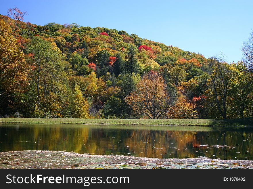 Colorful fall foilage on hills