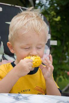 Free Children S Appetite. Royalty Free Stock Photo - 13702195