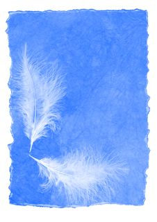 Letter Paper With Feathers Royalty Free Stock Photos