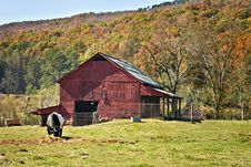 Red Barn With Autumn Mountain Royalty Free Stock Image