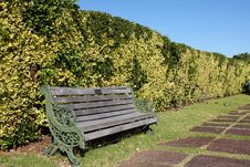 Wooden Bench In Front Of Hedge Stock Photo