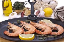 Free Tiger Prawns On Grill Stock Images - 13705254